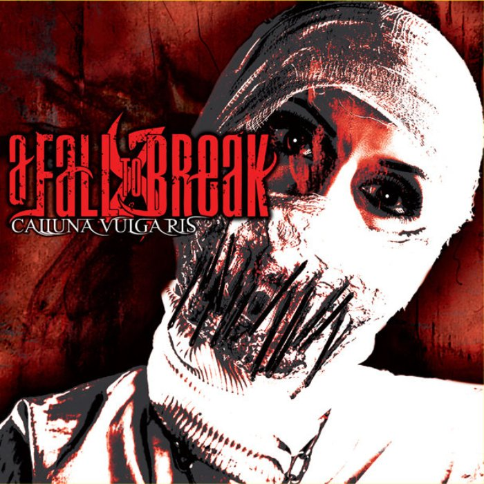 A Fall to Break - Calluna Vulgaris
